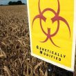 Monsanto Wins Again: Cancer Causing Glyphosate Now Doubled in Food Crops