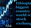Ethiopia: The Ethio-U.S. Business and Investment Summit in Houston, Texas