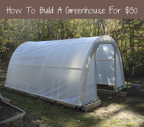 How to build A 50 Dollar Greenhouse, Yes For Real $50!