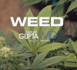 WEED – A CNN Special Report by Dr. Sanjay Gupta (Full HD 2013 Documentary)