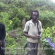 Rastafari Farmers and Organic Agriculture in Suriname