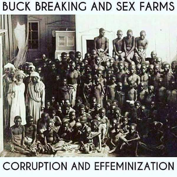 buck breaking sex farms