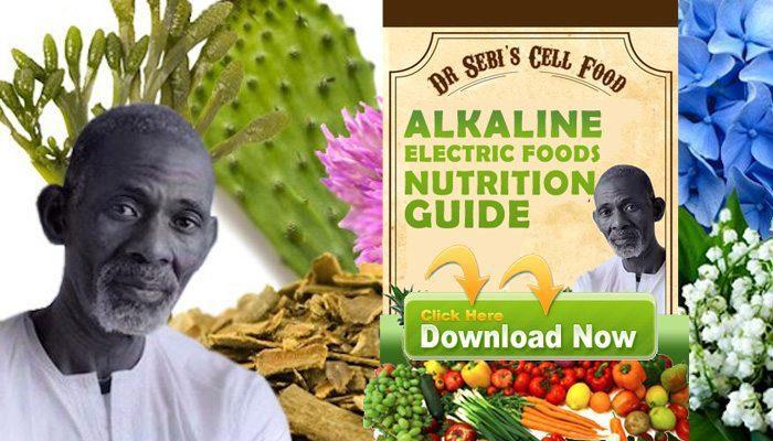 DOWNLOAD: Dr  Sebi's Alkaline Foods Nutritional Guide