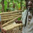 Noisey Jamaica heads to the hills to reason with Ras Haile Malekot