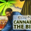 Cannabis/Marijuana and the Holy Bible