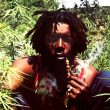 "Peter Tosh: ""Legalize It"" LIVE with Lyrics"
