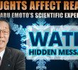 Dr. Masaru Emoto Amazing Film: Hidden Messages From Water