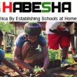 HABESHA, Inc: Black to Our Roots, helping Africa by establishing schools