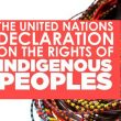 The UN Declaration on the Rights of Indigenous Peoples Explained