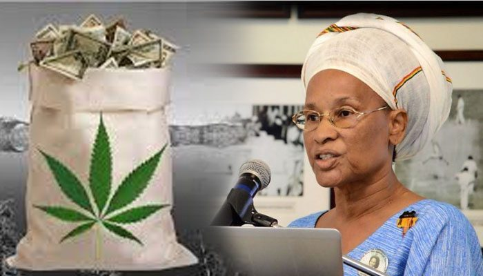 pay-us-back-marijuana-barbados
