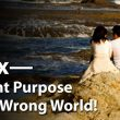 Sex- the right purpose within a wrong world