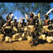 African Zulu Voices Music