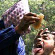 The Nepalese Honey That Makes People Hallucinate