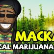 Macka B - Medical Marijuana Card